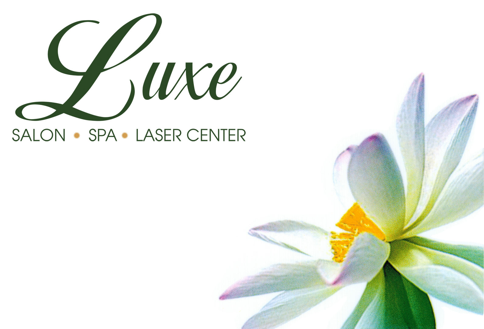 Luxe Salon Spa And Laser Center Gift Cards